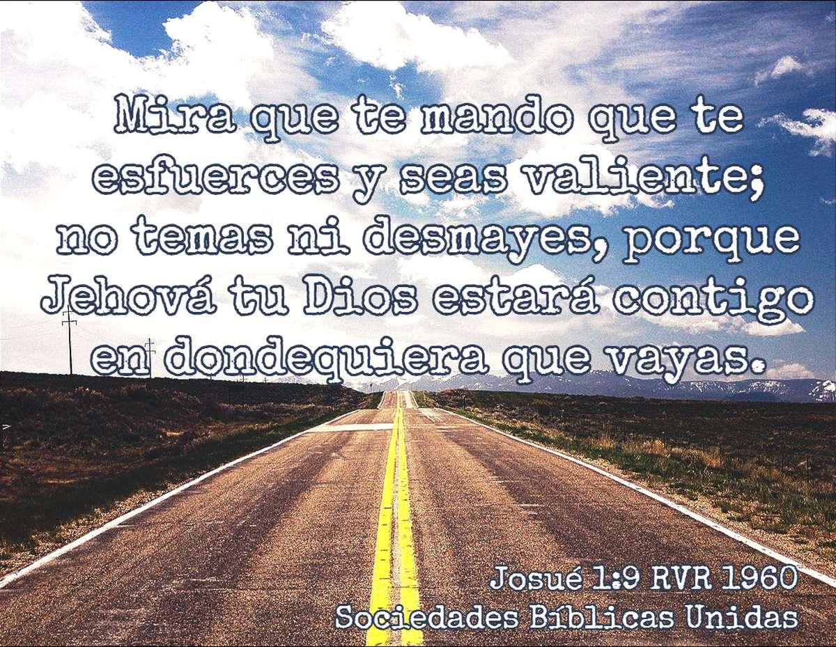 Versículos de la Biblia que dan ánimo y aliento - Sociedad Bíblica ...