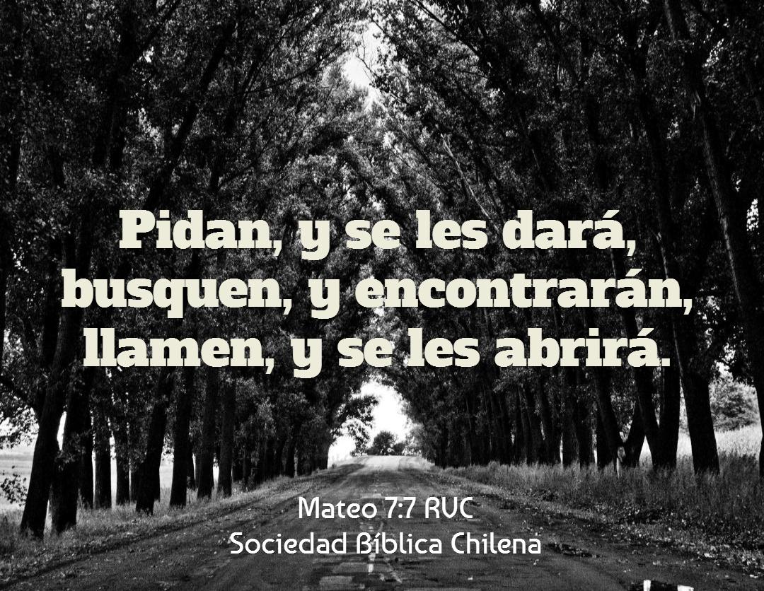 » Nuevas Frases Cristianas Para Dar El Pésame