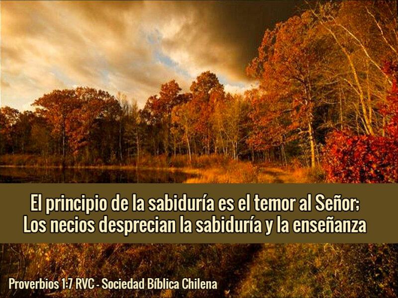 Versculos de la biblia acerca de la sabidura sociedad bblica versculos de la biblia acerca de la sabidura sociedad bblica chilena urtaz Gallery