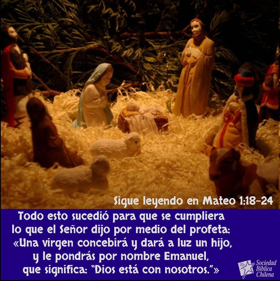 Navidad  Versos Bblicos sobre el nacimiento de Jess  Sociedad