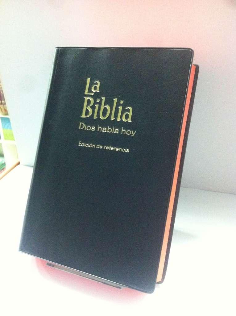 Biblia dios habla hoy concordancia referencia